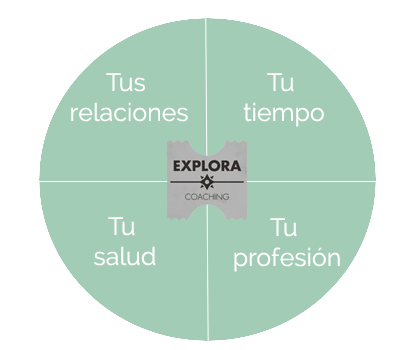 rueda-vida-coaching