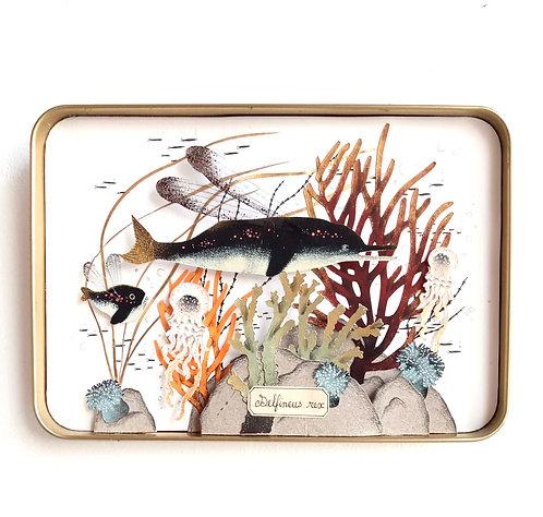 """Fond marin """"Delfineus Rex"""" en papier découpé Céline Chevrel"""