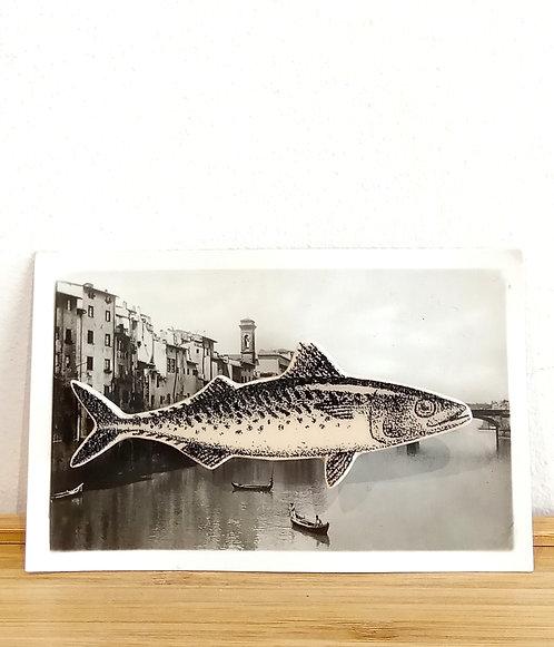Broche faïence poisson sur photo ancienne Stéphanie Cahorel