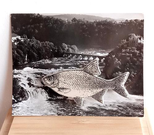 "Broche faïence ""poisson"" de Stéphanie Cahorel"