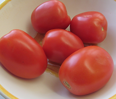 roma or plum tomatoes