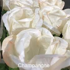Forminha p/Doces Rosas Champagne Pacote c/24 un.Carber