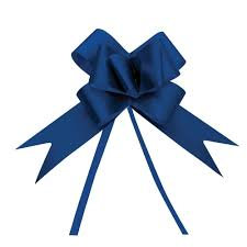Laço Pronto 23 mm pt c/10 un Decorado Azul Cromus