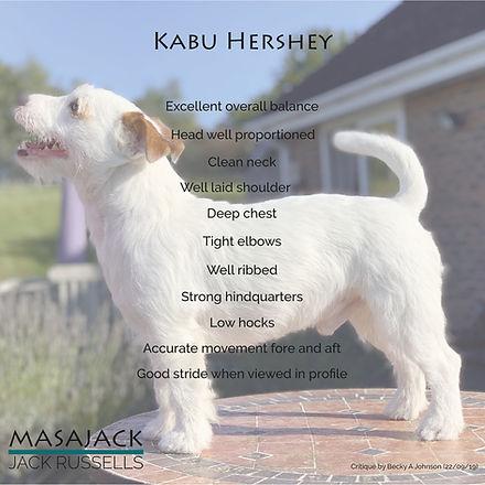 Kabu Hershey critique