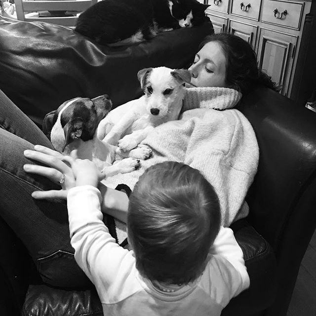 Kerrie with her two dogs, one of her cats and her small person.