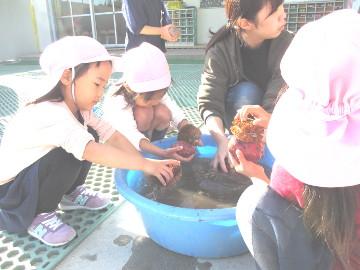 園庭の一角では、イモを洗う子どもたちの姿も。