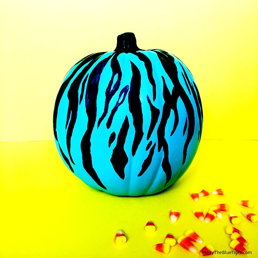tiger-stripe-pumpkin-2_edited.jpg