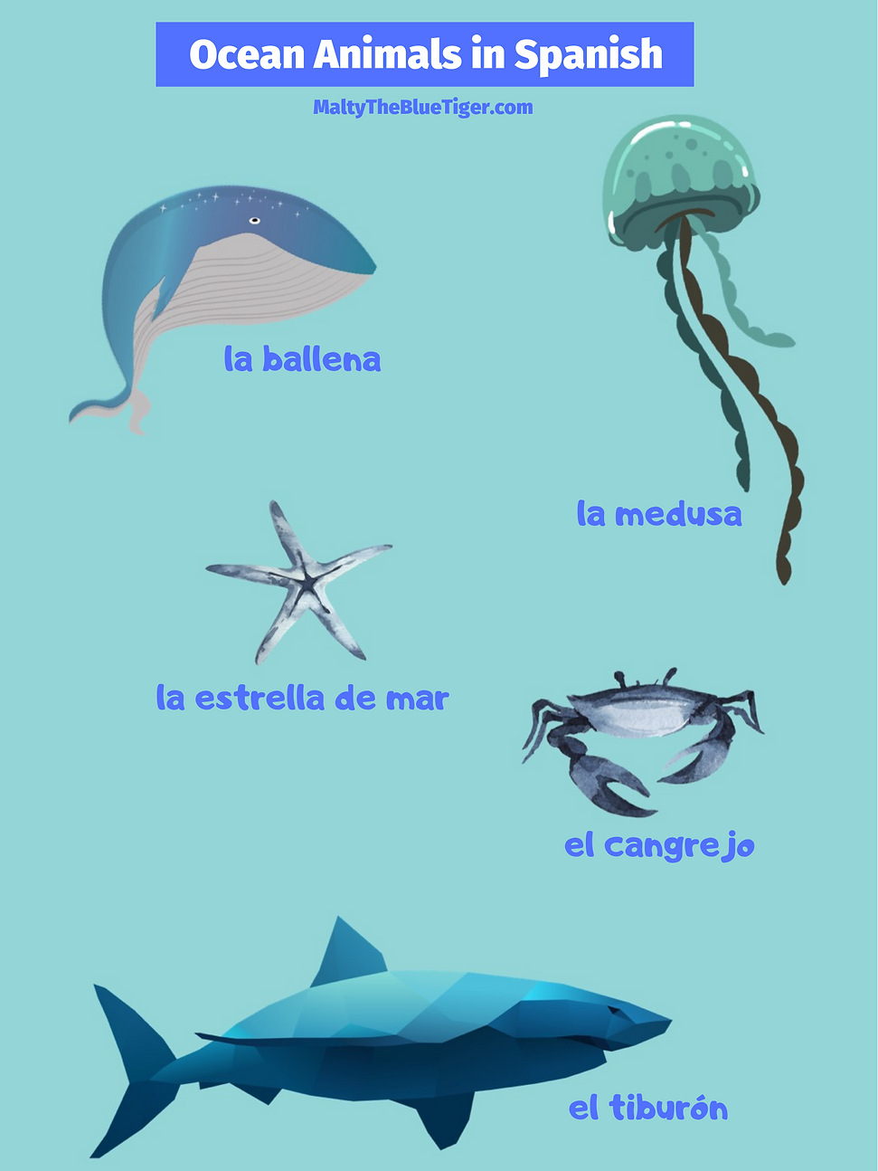 ocean-animals-in-spanish.png