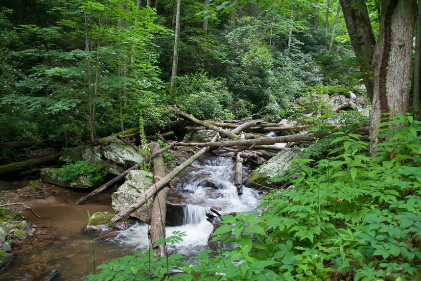 Anna Ruby Falls Recreation Area