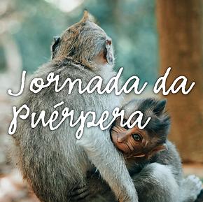 JORNADA PUERPERA.png