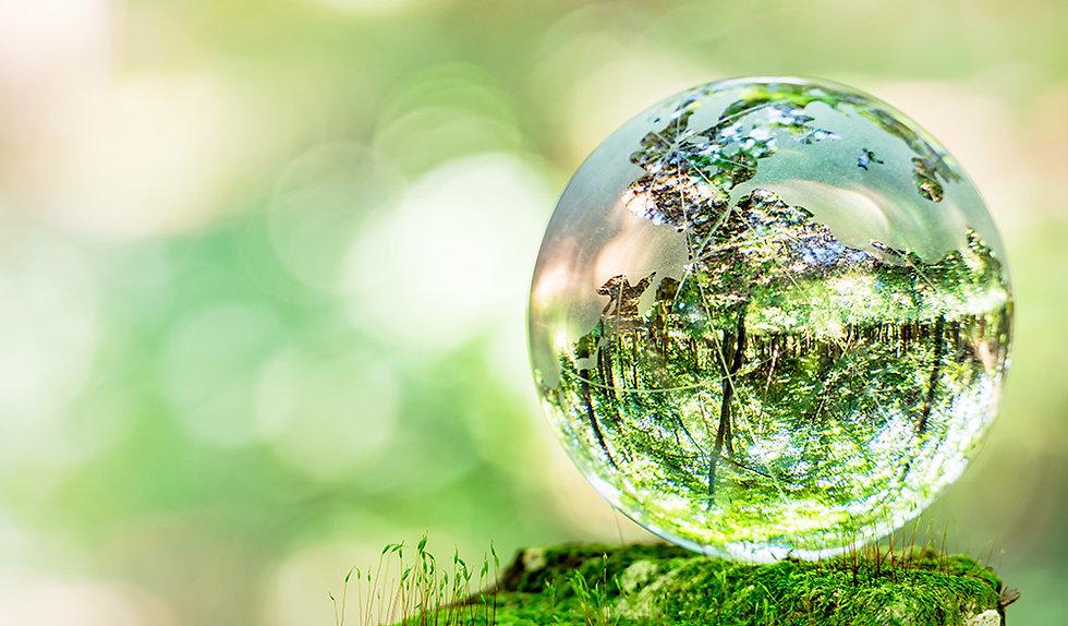 環境.jpg