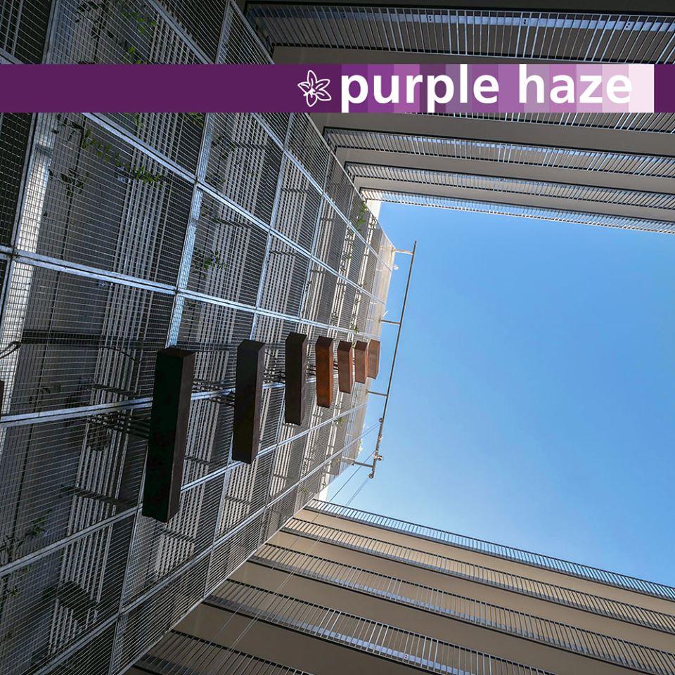 courtyard 13.jpg
