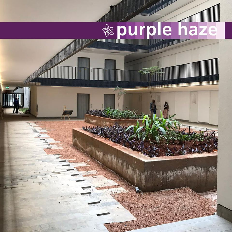 courtyard 16.jpg