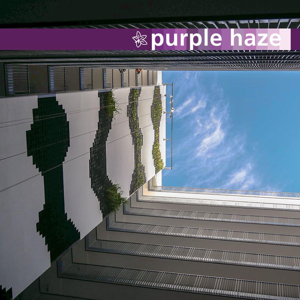 courtyard 14.jpg