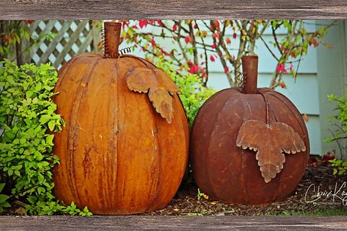 Rustic Pumpkins 20 x 10