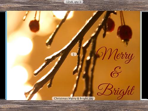 Merry & Bright  12 x 8