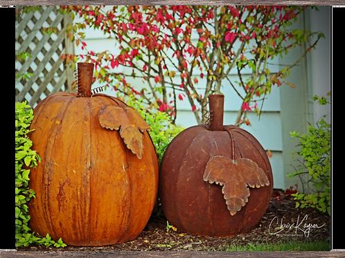 Rustic Pumpkins   14x11