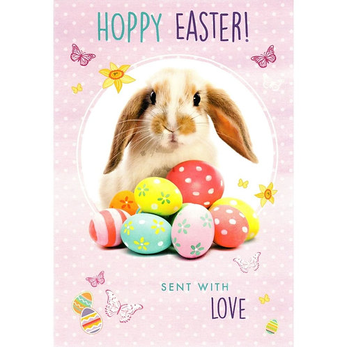 Bunny Pack of 5 Easter Cards