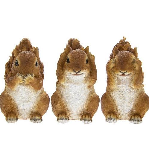Three Wise Squirrels