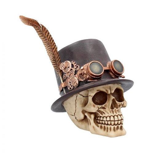 The Aristocrat Skull