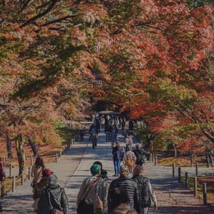 Kyoto/Japan