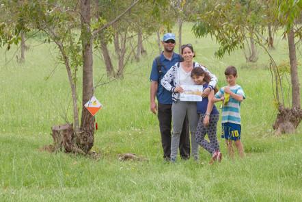 ניווט למשפחות יער קוממיות