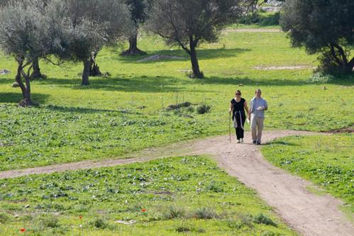 לטייל בטבע יער בן שמן