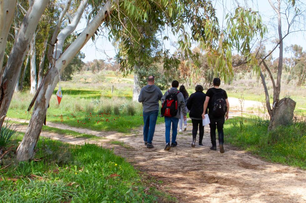 לטייל ביער בארי