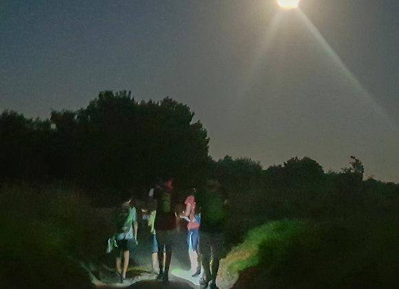כרטיס לשלושה בני משפחה, ניווט ליל ירח