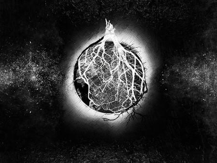 Mother Of - LP - Mesh 11/19/20