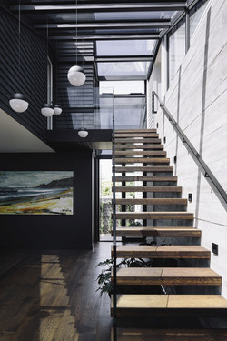 Ebony  220 wide board and Stairs