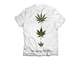 H.I.T.S. Spring Flowers Tee