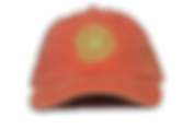 red-succulent-dad-hat.png