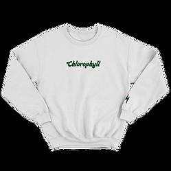 HITS-Chlorophyll-crewneck-sweatshirt-fro