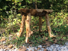 Maple stool & Rhododendron legs