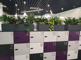 Buhler Group have an office revamp demonstrating customised planters