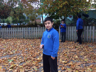 Exploring Autumn with STEM Stories!