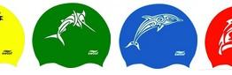 Stage Toussaint : Semaine des dauphins