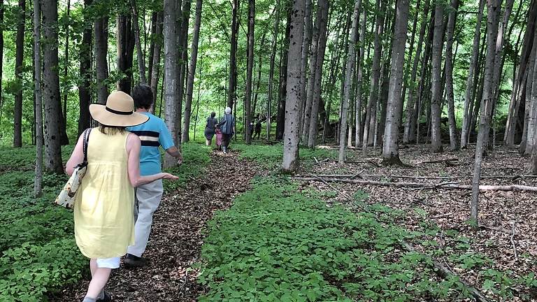 Story Walk on the Trails at Mount Lebanon