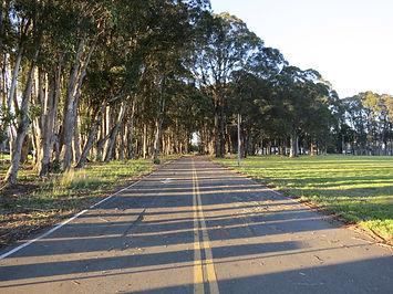 road_rsf.jpg