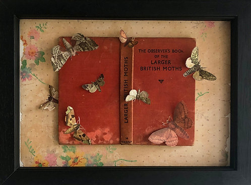 The Observer's book of larger British Moths