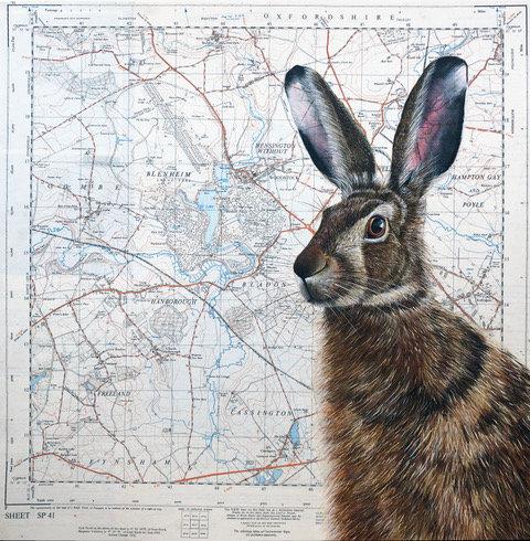 Woodstock Hare