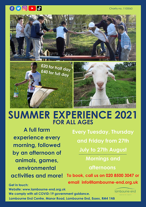 Summer farm experience 2021.png