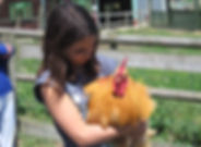 chicken & egg.jpg