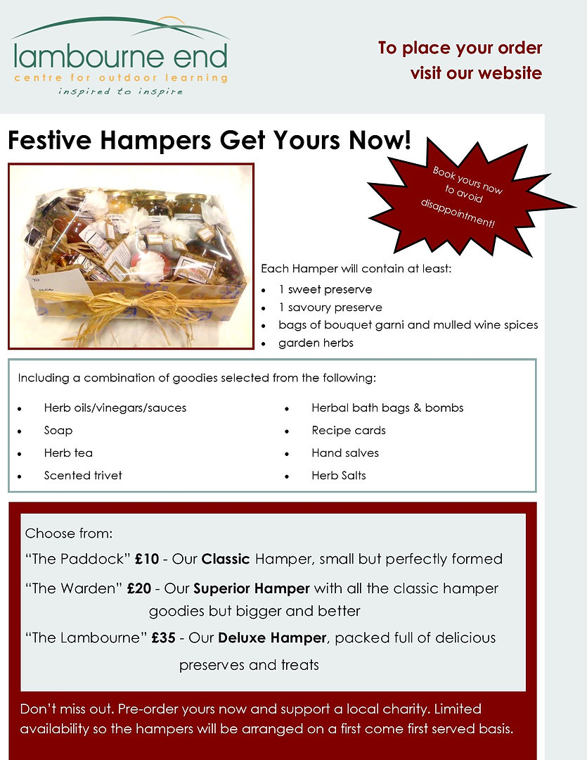 Christmas Hamper Poster Newsletter.jpg