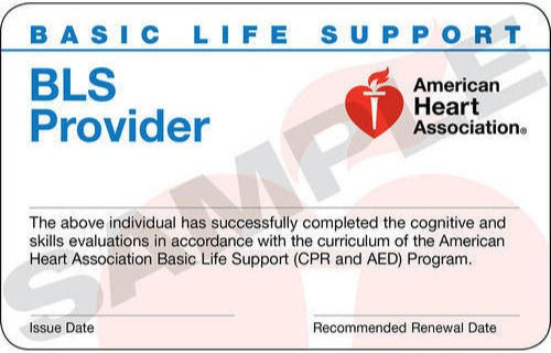 Basic Life Support, BLS