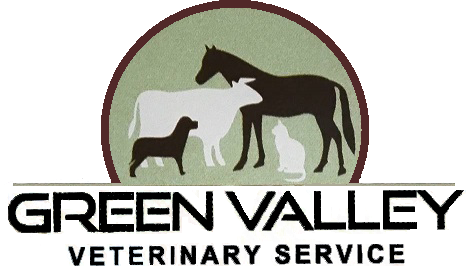 About Us - Green Valley Veterinary Service | Wamego | Mixed