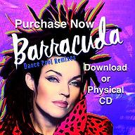 Purchase NOW Barracuda Dance Pool Remixe
