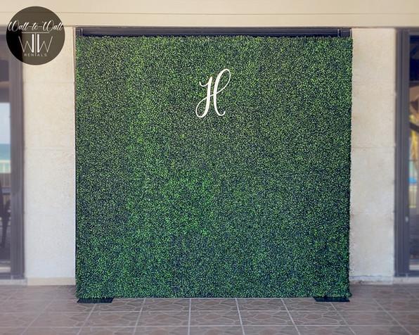 Boxwood Hedge Wall Rental Miami wedding