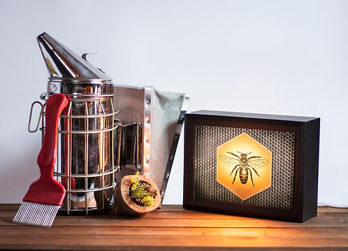 The Honey Bee - Honeycomb lightbox